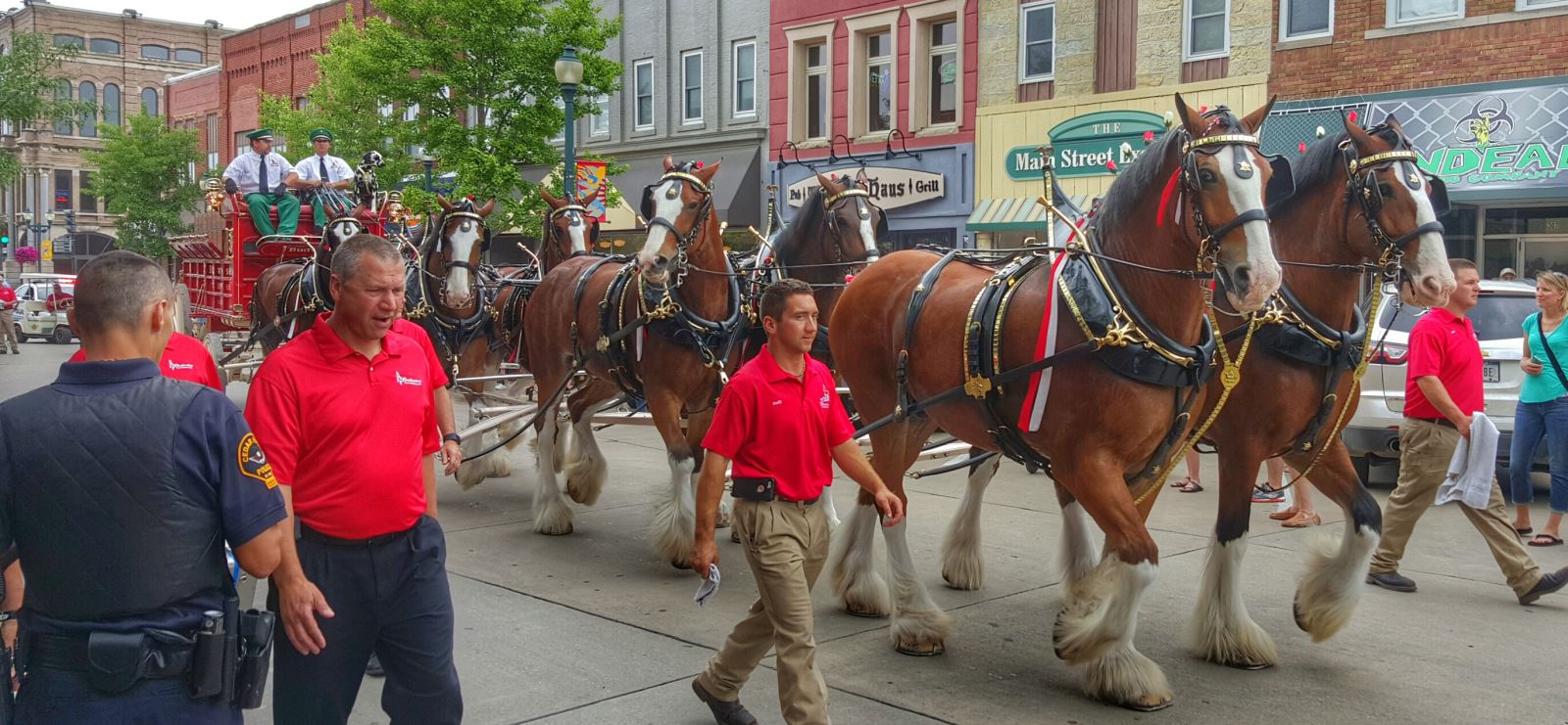 Budweiser Clydesdales on Main Street in Cedar Falls