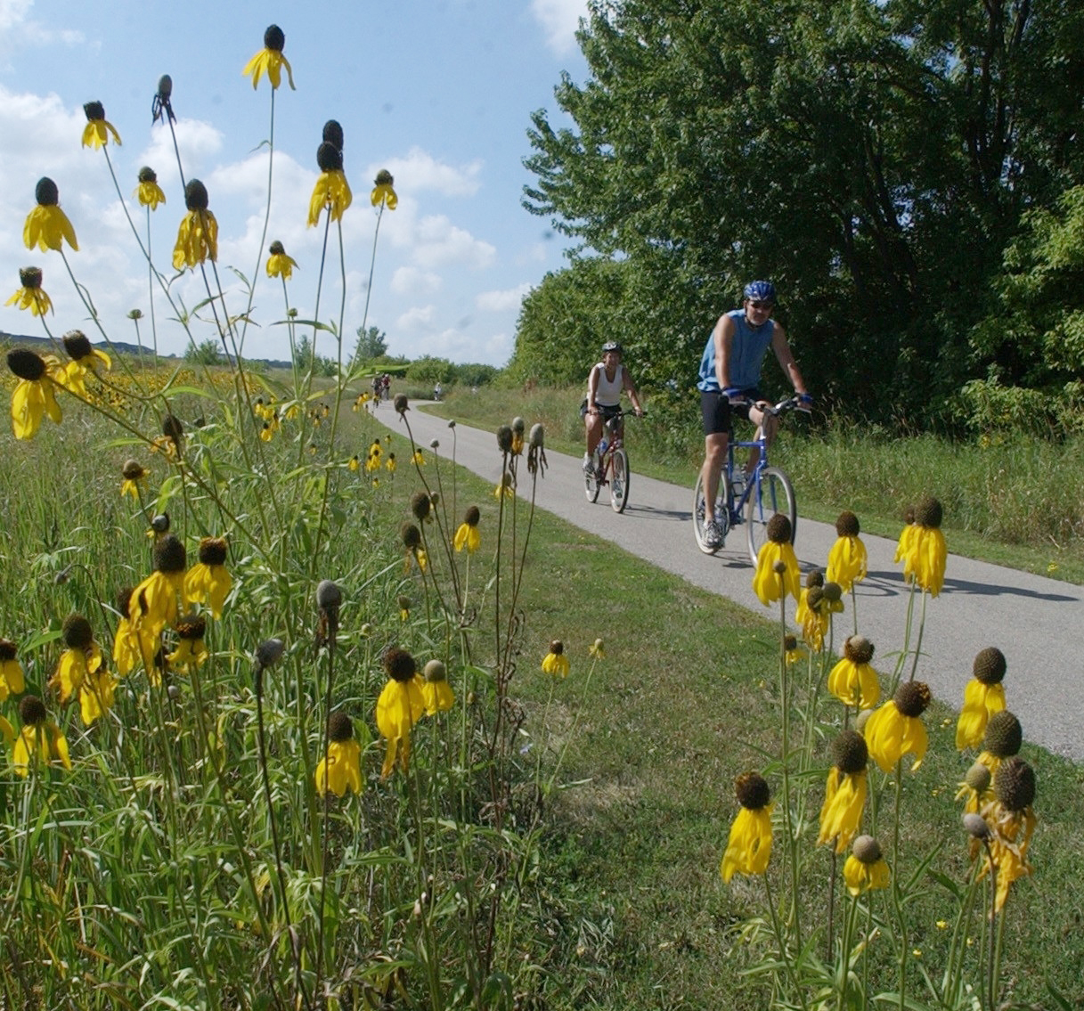 Bike the Valley during the first annual Cedar Valley Pedal Fest!